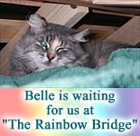 Waiting at the 'Rainbow Bridge' - Belle